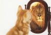 Efecto pigmalión, perspectivas vs realidades