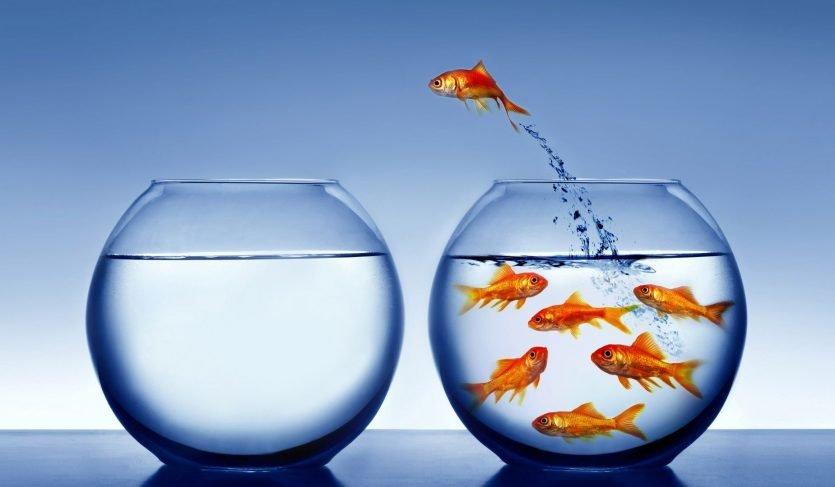 En ocasiones las resistencias al cambio son necesarias para valorar los resultados