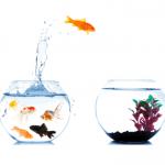 Aprender a delegar cuando se va a emprender
