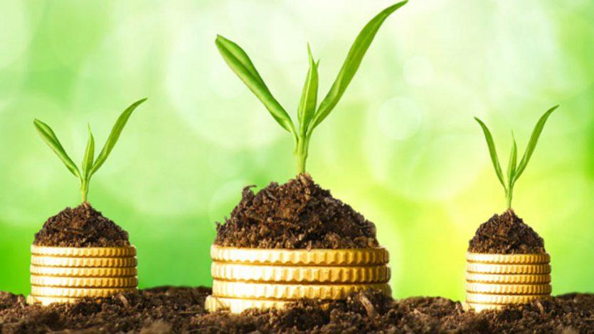 ¿Qué son negocios con poca inversión y gran ganancia?