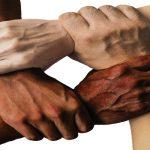 Una cultura sana unifica a la gente (2).